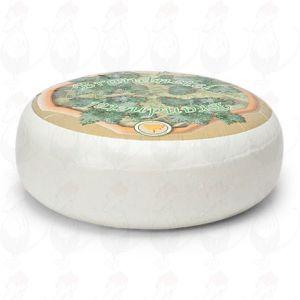 Nokkosvuohenjuusto | Kokonaiset juusto +/- 4,5 kilo