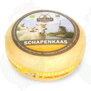 Organic sheep's milk cheese - Gouda Cheese | Premium Quality | Entire cheese 5,4 kilo / 11.9 lbs