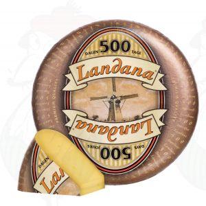 Landana 500 Days   Entire cheese 11,5 kilo / 25.3 lbs