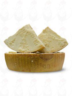 Parmigiano Reggiano D.O.P. - 24 months   Premium Qualität